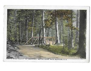 Path to Upper Falls Ammonoosuc Bretton Woods White Mountains New Hampshire