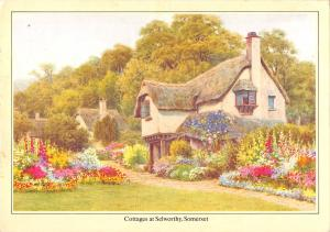 uk34601 cottages and selworthy somerset uk