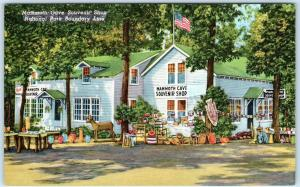 CAVE CITY, Kentucky  KY  Roadside MAMMOTH CAVE SOUVENIR SHOP  Postcard