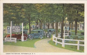 POTTERSVILLE, New York, 1900-1910´s; Under the Maples, Classic Cars, Adverti...