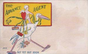 Stork With Bay The Advance Agent