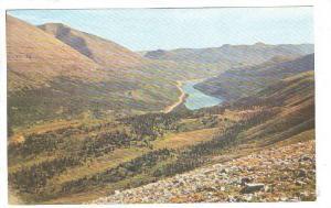 Caribu Grazing Country, Alaska, 40-60s