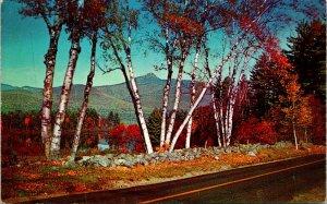 White Mts NH Mt Chocorua Postcard unused (30968)