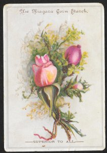VICTORIAN TRADE CARD Niagara Corn Starch Roses