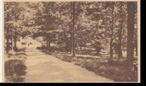 New York ST.Josephs camp Walk Between Sanatorium And ST. Rose Cottage   Alber...