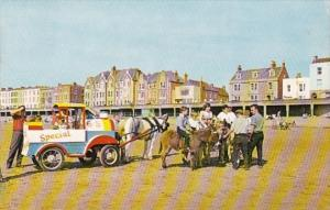 England Burnham-On-Sea Donkeys On The Beach 1964