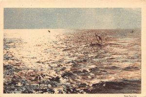 Ghana Gold Coast Accra return of the fishing boats postcard