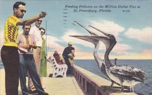 Feeding Pelicans on the Million Dollar Pier at St. Petersburg, Florida, PU-1959