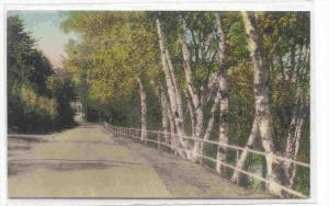 A Drive In Peterborough, New Hampshire, 1900-1910s