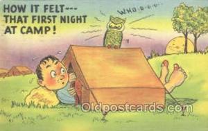 Owl Postcard Postcard