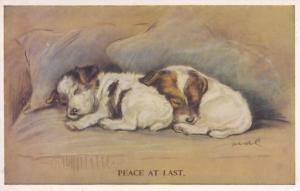 Peace At Last Tailwagger Dog Valentines Vintage Dogs Postcard