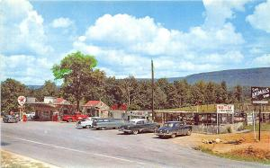 Deer Park GA Roadside Attractions Texaco Gas Station Old Cars Postcard