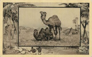 Africa Safari 1909 Series by Mintz of Chicago - Camel - DB