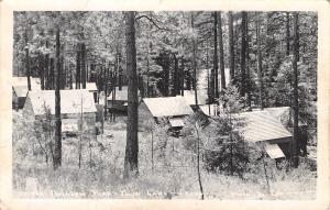 Twin Lake Idaho~Twinlow Park~Cabins in Trees~1940s Real Photo Postcard~RPPC