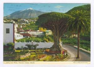 Icod Of The Wines, Tenerife, Canary Islands, Spain, 1950-70s