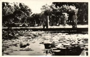 CPA Vietnam Indochine - Saigon - Le Jardin Botanique (85075)