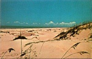Texas Gulf Coast Beautiful Sand Dunes
