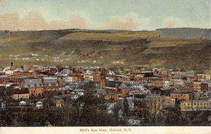 Hornell New York Birdseye View Of City Antique Postcard K62086