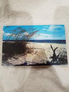 Vintage Postcard, Beautiful White Sandy Beach on Florida's coasts