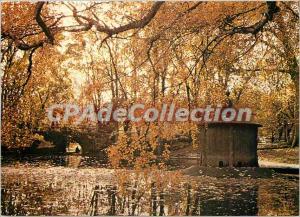 Modern Postcard Toulouse Cite des Violettes Royal garden in autumn