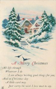 Christmas~Blue Birds Fly From Snow Covered Homes~Pines~Steps~JP NY 1920s PC