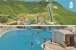 Aberdeen Hong Kong The Ocean Park Postcard