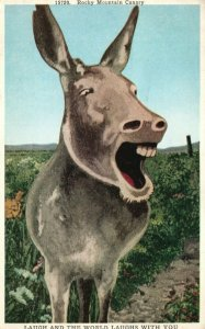Vintage Postcard 1920's Rocky Mountain Canary The World Laughs With You Donkey