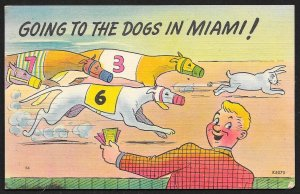 Comic Going To The Dogs Greyhound Race Miami Florida Unused c1940s