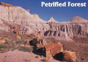 Arizona Petrified Forest National Park Blue Mesa Area