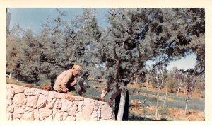 Non Postcard Backing, Dated 4-12-1966 Chtaura, Lebanon , Carte Postale writin...