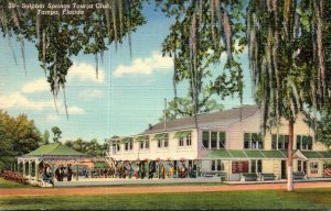 Florida Tampa Sulphur Springs Tourist Club Curteich