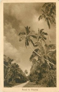 Lithograph Postcard; Palm Trees along Road to Houma, Tonga, posted 1950