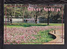 Ocala,Florida Postcard BIN
