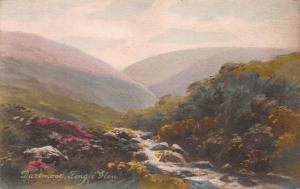 Fingle Glen, Dartmoor, England, Early Hand Painted Postcard, Unused