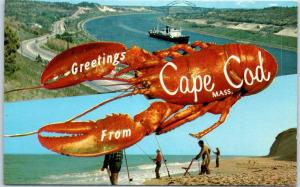1950s Massachusetts Postcard Greetings from CAPE COD Lobster / Beach Fishing