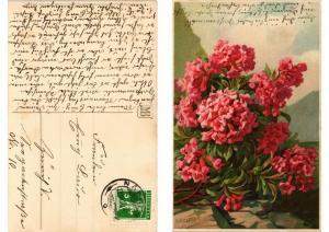 CPA Gruss von der Alm Meissner & Buch Litho Serie 1775 (730586)