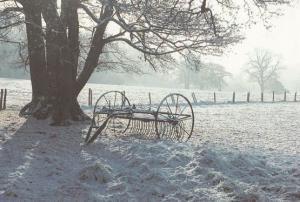 York Farmers Hay Rake at Christmas Postcard