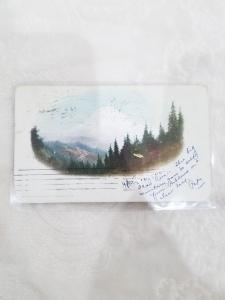 Antique Postcard. Portland, OR.   Mountain. Detroit Photographic Co. Maybe 218
