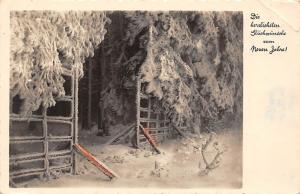 Die herzlichsten Glueckwuensche zum Neuen Jahre! New Year Winter Scenery