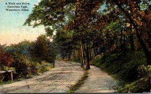 Connecticut Waterbury Hamilton Park A Walk and Drive 1913 Curteich