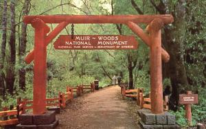 CA - Muir Woods National Monument