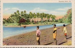 Sigatoka River Fiji Young Boys UNUSED Vintage Linen Postcard D99
