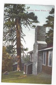 CA Mount Wilson Cabin Fireplace Vintage Postcard