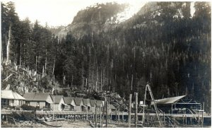 Swansons Bay BC Canada sulfite pulp mill town being built RPPC early c1909