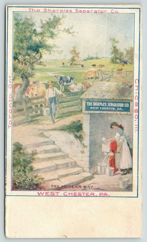 West Chester PA~Sharples Separator Co~Lady Uses Modern Way~Dairy Farm Cows~c1905