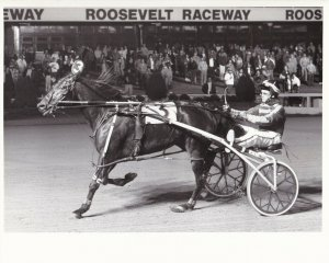 ROOSEVELT RACEWAY, Harness Horse Race, STARDRIFT HANOVER winner