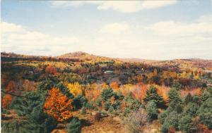 Spectacular, Vermont/VT Postcard, Fall Foliage, Near Mint!