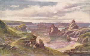 TUCK #7176, Kynance Cove, Lizard, Cornwall, England, United Kingdom, 10-20s