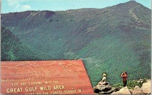 Great Gulf Wild Area view from Mt. Washington Auto Road, New Hampshire postcard