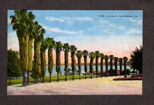 CA Park Trees La Jolla nr San Diego Postcard California